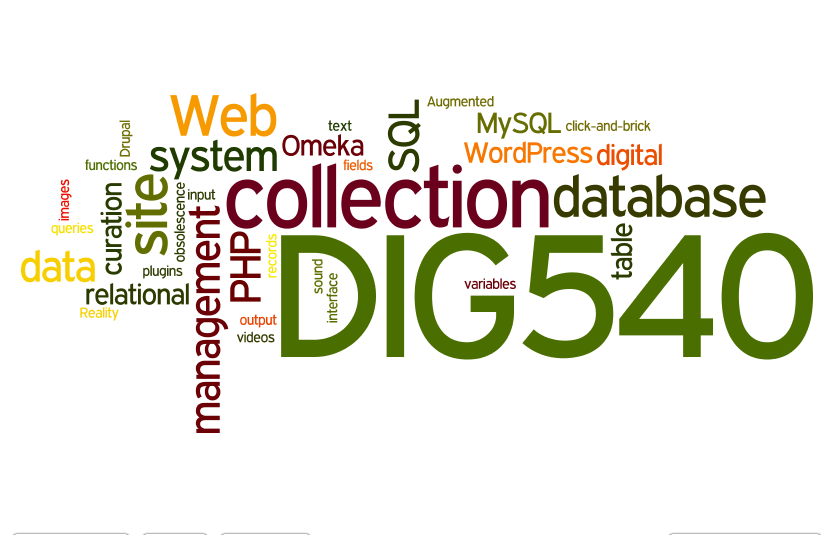 Dig540 Wordle Tag Cloud Warm